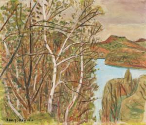 白樺新緑と湖